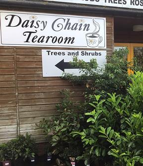 Gardening World Limited - Garden Centre Kent, Newington and Sittingbourne. Daisy Chain Tearoom.